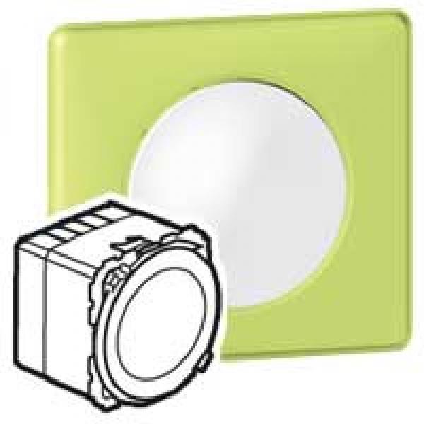 voyant de signalisation programme c liane 2 niveaux de r glage lumineux legrand ref 067651. Black Bedroom Furniture Sets. Home Design Ideas