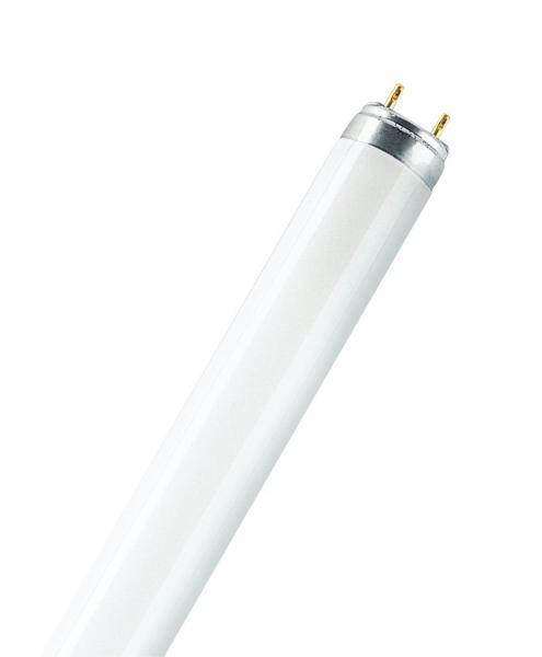 lumilux t8 l 36w 965 biolux ledvance sasu ref 270821 source tube fluo tube fluo t8 source. Black Bedroom Furniture Sets. Home Design Ideas